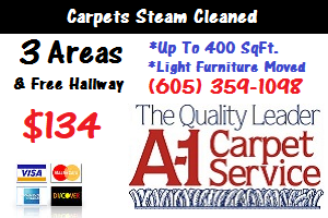Carpet Cleaning Tea, SD